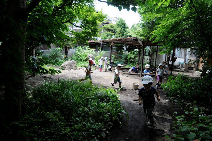 緑豊かな園庭