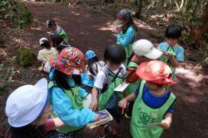キャンプ(樹海探検)