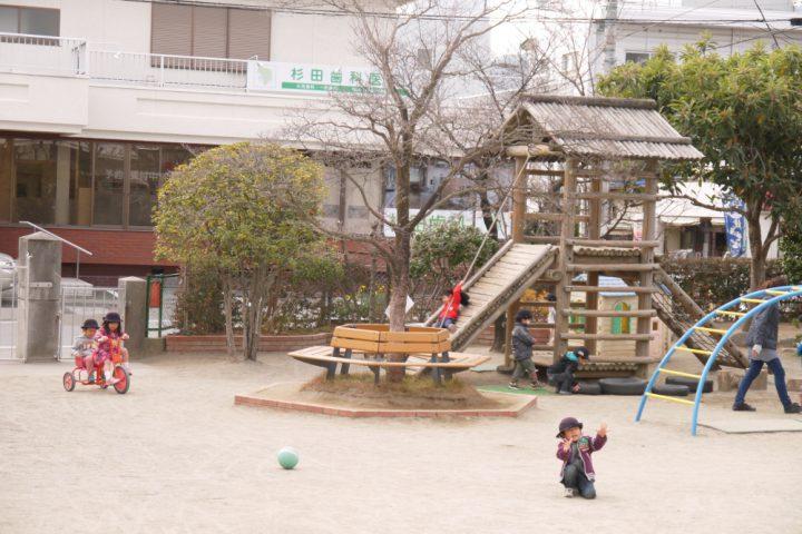 木や遊具がたくさんの園庭