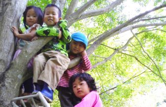 皆で木登り