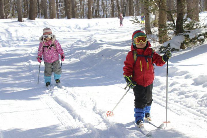 冬のスキー体験